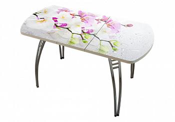 Стол раздвижной орхидея