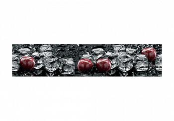 Стеновая панель с фотопечатью вишня на черном